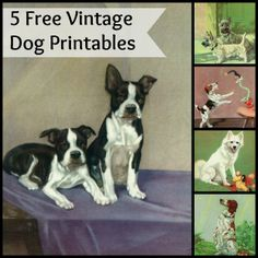 House of Hawthornes:  Vintage Dog Printables