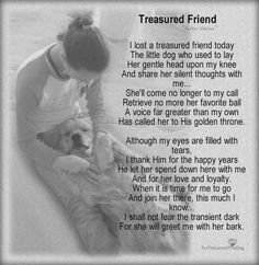 In memory of all our fur babies, most recent: Mittens, Lily, Tibby, mamacita and our sweet Miley dog 💓😿💓🐶 Animal Quotes, Dog Quotes, Dog Sayings, I Love Dogs, Puppy Love, Pet Poems, Pet Loss Grief, I Miss You More, Pet Remembrance