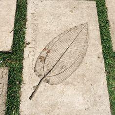 Bogota (Colombia) - Botanic garden - concrete bas relief - Jorge Torres ©