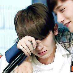 Tu y Woozi estaban peleados debido a una discusión estaban muy mal los dos, encendiste la televisión y vistes a tu novio llorando