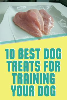 10 Best dog treats for training your dog!