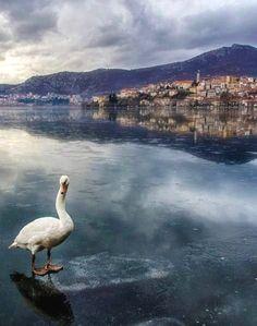 The frozen lake of Kastoria, Macedonia, Greece | by Amazing Greece