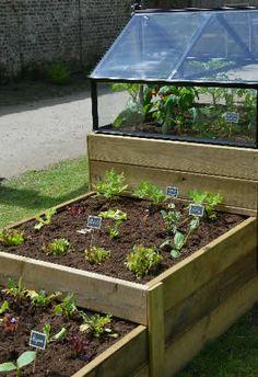 vierkantemeterbakken tuinieren op vierkante meter Rooftop Garden, Balcony Garden, Herb Garden, Vegetable Garden, Garden Plants, Home And Garden, Outdoor Projects, Garden Projects, Wood Pallet Planters
