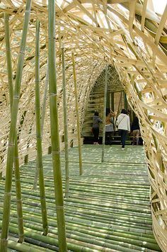 The Light of Shodoshima   A giant dome constructed of 5,000 island-grown bamboo.