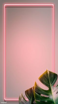 Tropical pink neon l Pink Neon Wallpaper, Flower Background Wallpaper, Framed Wallpaper, Phone Screen Wallpaper, Cute Wallpaper Backgrounds, Pretty Wallpapers, Flower Backgrounds, Aesthetic Iphone Wallpaper, Aesthetic Wallpapers