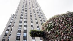 Jeff Koons Blooms All Over Rockefeller Center - http://art-nerd.com/newyork/jeff-koons-blooms-all-over-rockefeller-center/