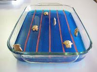 Getting psyched for the Olympics. This is blue jello with licorice lane markers and Teddy Graham swimmers.for an olympic party!