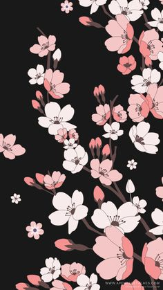 Papéis de parede para baixar gratuitamente e usar em seu celular - Hintergrundbilder iphone - Katzen / Cat Flower Background Wallpaper, Flower Phone Wallpaper, Kawaii Wallpaper, Cute Wallpaper Backgrounds, Tumblr Wallpaper, Wallpaper Iphone Cute, Cellphone Wallpaper, Flower Backgrounds, Pretty Wallpapers