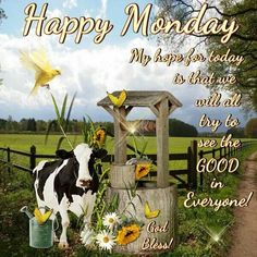 It's Monday! Happy Monday Quotes, Good Morning Happy Monday, Happy Week, Its Friday Quotes, Good Morning Greetings, Good Morning Quotes, I Am Happy, Good Morning Picture, Morning Pictures