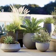 Shop Tidore Planters. Clean taper shapes in graduated slats have the look of wood with the easy-care of plastic, making them a natural for outdoor use. Grey wash finish adds to the organic look.