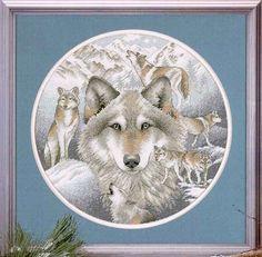 Call of the wolf - Joaquín Romero - Веб-альбомы Picasa