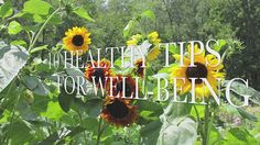 Breast Cancer - 10 Healthy Tips For Well-Being