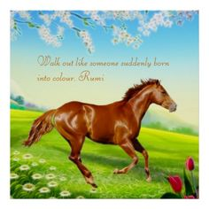 Rumi - Walk out like someone suddenly born into colour. Poster Colour, Walk Out, Liking Someone, Suddenly, Poster Prints, Wisdom, Horses, Gifts, Animals