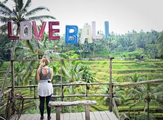 #lovebali rice fields ubud, bali indonesia. sharing 5 tips for before you visit this magical country on my blog!