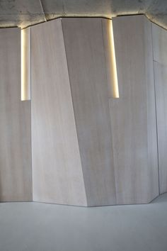 Darya Girina Interior Design&Visualizations: Minimalist walls and walls solutions of Modern Minimalist Interiors Lobby Interior, Interior Walls, Interior Lighting, Interior Design Living Room, Minimalist Interior, Modern Minimalist, Facade Lighting, Interior Minimalista, Wall Finishes
