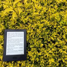 Kindle - A book lover's unwilling best friend. While we love the ease of use and the fact that we can carry a hundred books without adding an extra ounce of weight does excite us; we do miss the feel of paper between our fingers and the smell! Sigh!  In today's post we talk all about our beloved Kindle! Link in bio. . . . . #lbtc #newPost #kindle