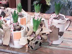 ΖΟΥΜΠΟΥΛΙΑ-PLANT Gift Wrapping, Deco, Shop, Flowers, Gifts, Paper Wrapping, Presents, Wrapping Gifts, Deko