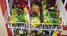 Ein genialer Tipp:Gewürzgurken im Geschirrspüler einkochen Cooking App, Cooking Chef, Easy Cooking, Healthy Cooking, Cooking Ideas, Cooked Cucumber, Kenwood Cooking, Cooking For Beginners, Beginner Cooking