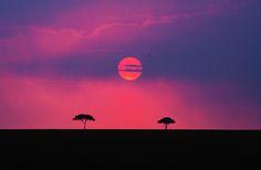 """Land of the Maasai (Kenya)"" by Aubrey Stoll via 500px.com ( Maasai Mara, Kenya )"