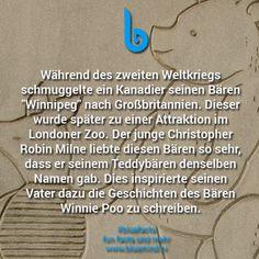 #bluefacts #fakten #wissen #unnuetz #weisheit #spruch