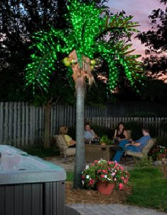 Lighted Palm Tree At Night 1195
