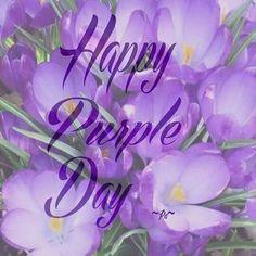 Happy purple day!