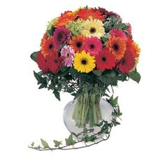 700+ Gambar Buket Bunga Mawar Asli