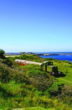 The Alderney train which pulls old London Tube carriages. The only train in the Channel Islands! Sailing Day, Sailing Trips, Channel Islands Uk, Trains, Guernsey Island, Scottish Islands, White Horses, Old London, Isle Of Wight