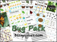 Free Bug Printables by 3Dinosuars.com - over 70 pages made to be used with children from 2 to 7.