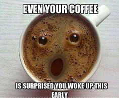 Even You Coffee Is Amazed That You Are Awake This Early – Funny Animal Pictures With Captions – Very Funny Cats – Cute Kitty Cat – Wild Animals – Dogs If you think my coffee is surprised, you should see my face! More