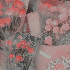 Baby Pink Aesthetic, Peach Aesthetic, Aesthetic Japan, Princess Aesthetic, Sky Aesthetic, Aesthetic Colors, Flower Aesthetic, Aesthetic Images, Aesthetic Collage