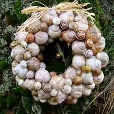 Šnekový věnec Pine Cone Crafts, Wreath Crafts, Diy Wreath, Holiday Wreaths, Christmas Decorations, Christmas Ornaments, Christmas Flower Arrangements, Seashell Wreath, Beach Cottage Decor