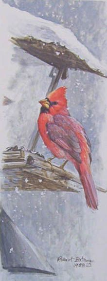 Robert Bateman At The Feeder Cardinal