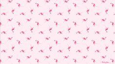 Mari-Orr-Pink-Flamingo-Wallpaper-Desktop.jpg (1920×1080)