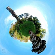 Brunel's Dancing Planet  #brunelwoods #torquay #totempole #isambardkingdombrunel #carving #tree #tinyplanet #littleplanet #360photography #360photo #360view #360