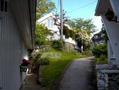 Drøbak by