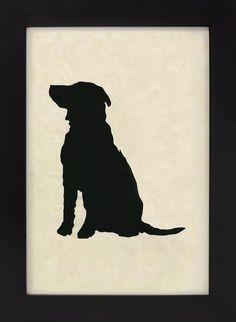Labrador by Fernando Boher