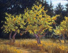 400 Apple Orchard, Mendocino by Ann Thiermann Pastel ~ 9 x 12