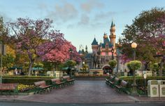 Walt Disney World ticket is key to enjoy a magical vacation in Disneyland! Save on your Walt Disney World tickets by purchasing them at best discounted pricing. Disney Parks, Walt Disney World, Disney World Tickets, Disney Day, Disney Love, Disney Magic, Disney Stuff, Disney Resorts, Punk Disney