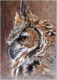 Great Horned Owl by Kelly Singleton