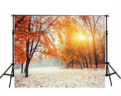 6.5ft(w)x5ft(h) Sunset Red Maple Leaves Snow Photography Backdrop Background FT0293