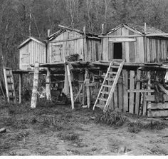 Athapascan fishing camp on the Yukon River, Alaska, ca. 1904 ::