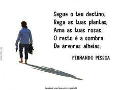 Segue o teu destino, Rega as tuas plantas, Ama as tuas rosas. O resto é a sombra De árvores alheias.