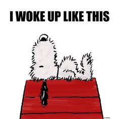 """I woke up like this. (""""I Woke Up Like This Happy Tuesday ☔"""") --Peanuts Gang/Snoopy Peanuts Cartoon, Peanuts Snoopy, Peanuts Comics, Snoopy Quotes, Peanuts Quotes, Charlie Brown And Snoopy, Snoopy And Woodstock, Happy Tuesday, Tuesday Greetings"""