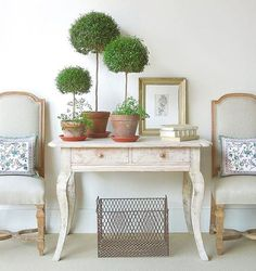 Check out the best indoor plants for farmhouse, French Country and Cottage Style Homes.See how to decorate with indoor plants for a chic and elegant look. French Country Cottage, French Country Style, French Country Decorating, French Farmhouse, French Decor, Country Farmhouse, Wooden Window Boxes, Diy Wooden Wall, Best Indoor Plants