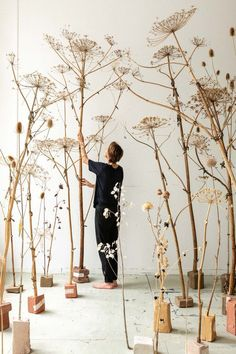 Beautiful Flowers and Plants photography by marieke verdenius concept & design by vlinder&vogel On-T Arte Floral, Giant Flowers, Dried Flowers, Wedding Fotografie, Roses Photography, Creative Photography, Photography Ideas, Diy Wanddekorationen, Instalation Art