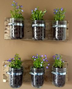 Easy diy wood pallet decor combined with mason jar wall hanging planter to put flowers or other succulent houseplants