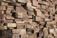 Days - Wonderwall Studios #timber #wall