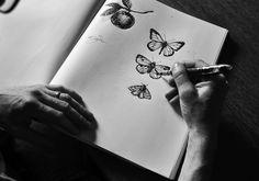 sketchbook butterflies via bookhou at home