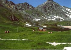 Hatcher Pass, Alaska. Very good food and a very scenic drive up the mountain.